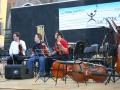 Alcuni violinisti