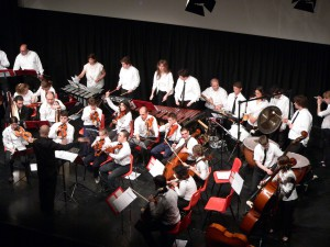 La prima Orchestra all'Auditorium della Libertà nel 2008